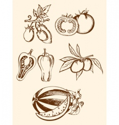 Set of vintage vegetable icons vector