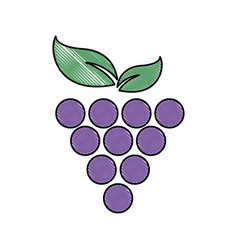 Grape fruit fresh food image vector