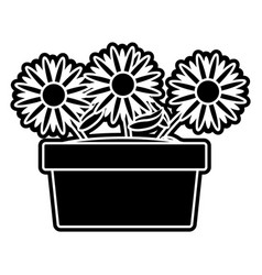 isolated sunflower design vector image