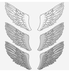 Wings of bird set vector image vector image