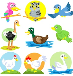 Cartoon birds poultry set vector