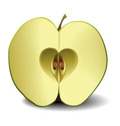 Apple fruit heart vector