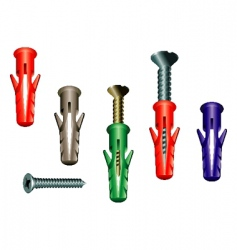 dowel screw vector image