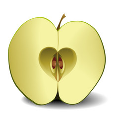 apple fruit heart vector image vector image