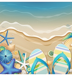 flipflops and shells vector image vector image