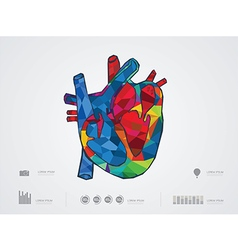 Heartsection vector
