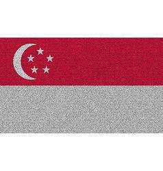Flags singapore on denim texture vector