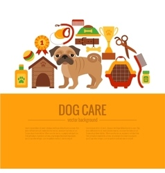 Pug care infographic concept vector