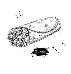 Burrito drawing traditional mexican food vector