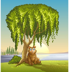 A bear under a big tree vector image