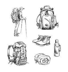 hiking and camping vector image
