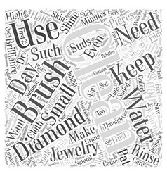 how to clean your diamonds Word Cloud Concept vector image