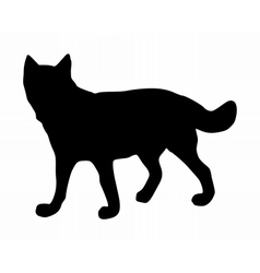 The black silhouette of a wolf on white vector image