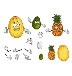 Pineapple lime and melon fruits vector image