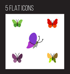 Flat monarch set of beauty fly violet wing vector