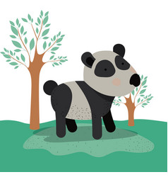 panda bear animal caricature in forest landscape vector image