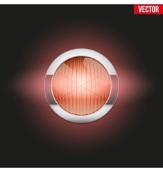 Round car headlight turn indicator is on vector