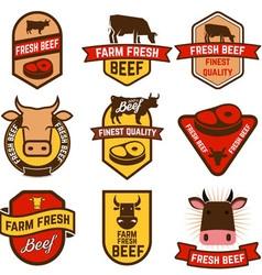 farm fresh beef vector image