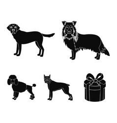 dog laika beagle and other web icon in black vector image vector image