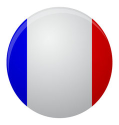 France flag icon flat vector image