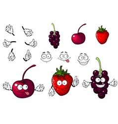 Cartoon cherry strawberry and blackberry vector