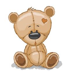 drawing teddy vector image