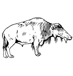 prehistorical animal vector image vector image