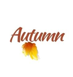 Autumn Logo Template vector image vector image