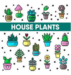 house plants in flower pots cactus vector image