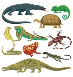 Reptiles animals set vector