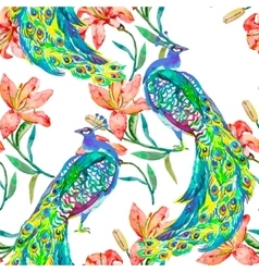 Beautiful peacock pattern peacocks and vector