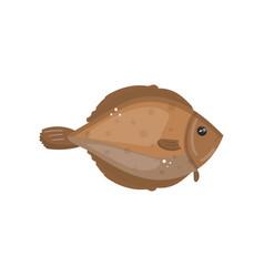 Flounder fish animal fresh seafood cartoon vector