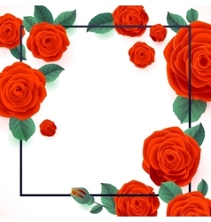 Red Roses on White Background Poster vector image