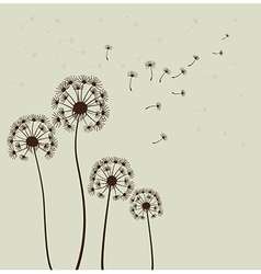 Sylized dandelions vector
