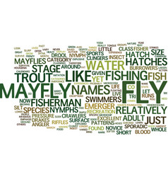 The mayfly nypmh text background word cloud vector