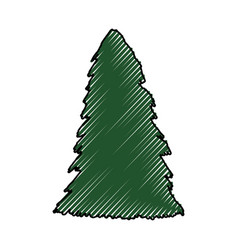 tree pine christmas vector image