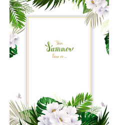 universal invitation congratulation card with vector image
