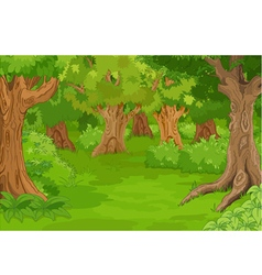 Forest glade vector