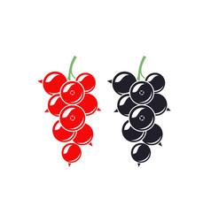 Black currant and red currant vector