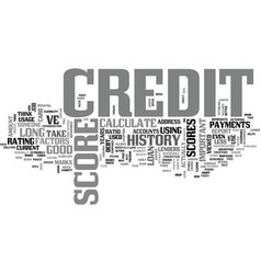 What factors are used to calculate credit scores vector