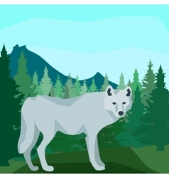 Wolf in the coniferous forest animals and nature vector