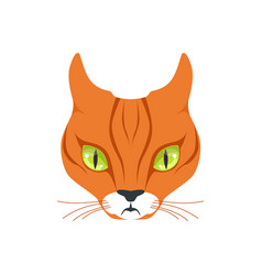 beautiful red cat cartoon animal character vector image