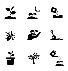 Black growing icon set vector