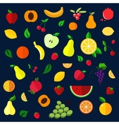 Fruits and berries flat icons vector image vector image