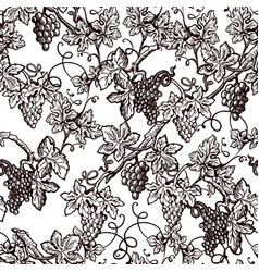 Lush grape bushes black and white seamless pattern vector