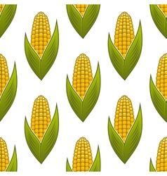Seamless pattern of ripe golden corn on the cob vector