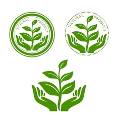 Natural product icon with hands and plant vector