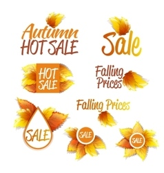 Autumn Sales Theme vector image vector image