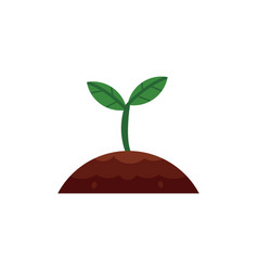 Flat sprouting seedling sapling icon vector