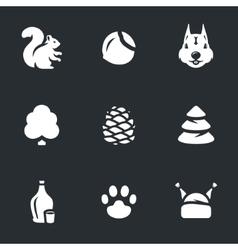 Set of squirrel life vector